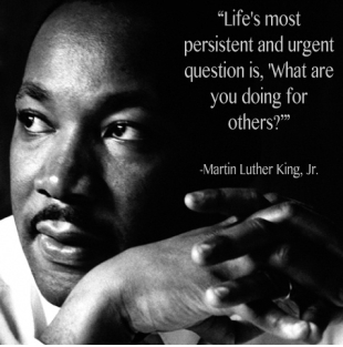 mlkquestion